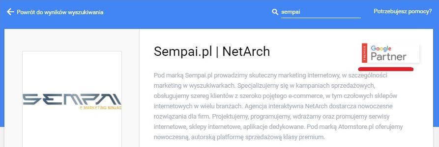 PREMIER Google Partners