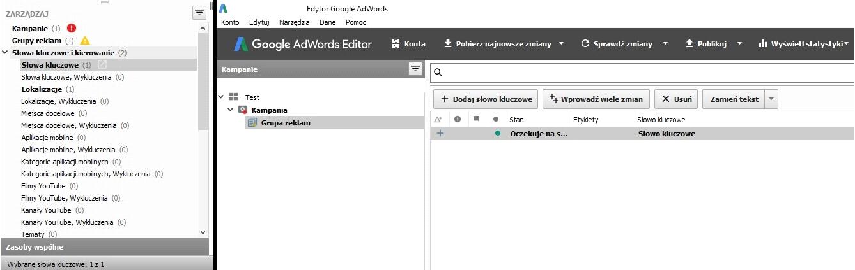 Edytor Google AdWords